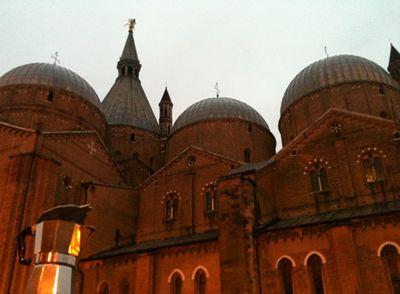Moka contempla Sant'Antonio a Padova