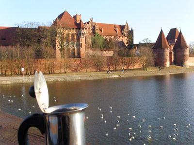 La moka vicino al Castello di Malbork