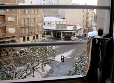 Moka che si affaccia per vedere la neve, Soria - Spagna
